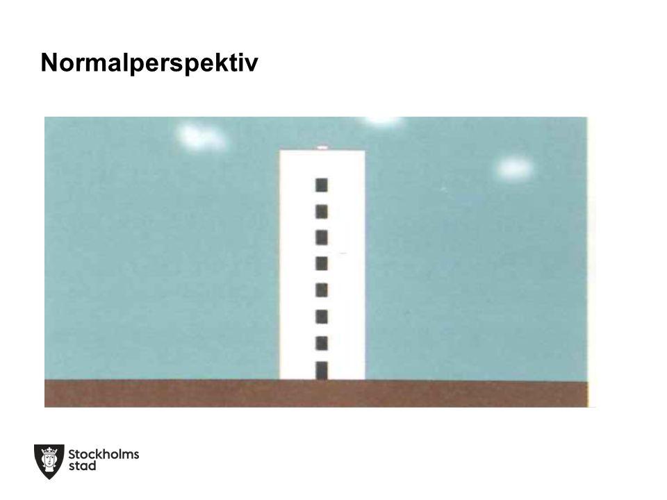 Normalperspektiv