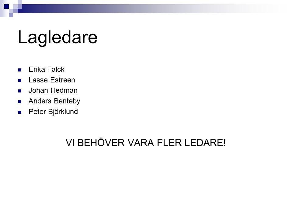 Lagledare Erika Falck Lasse Estreen Johan Hedman Anders Benteby Peter Björklund VI BEHÖVER VARA FLER LEDARE!