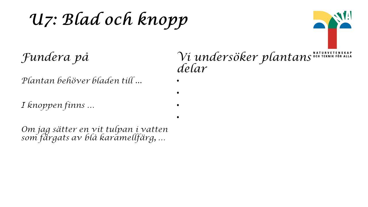 U7: Blad och knopp Fundera på Plantan behöver bladen till...