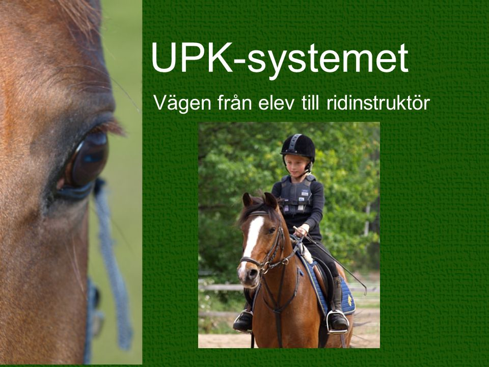 UPK-systemet Vägen från elev till ridinstruktör