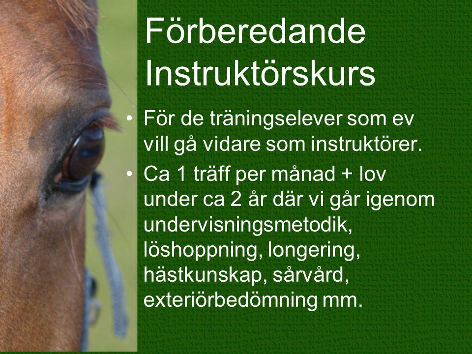 Förberedande Instruktörskurs För de träningselever som ev vill gå vidare som instruktörer.