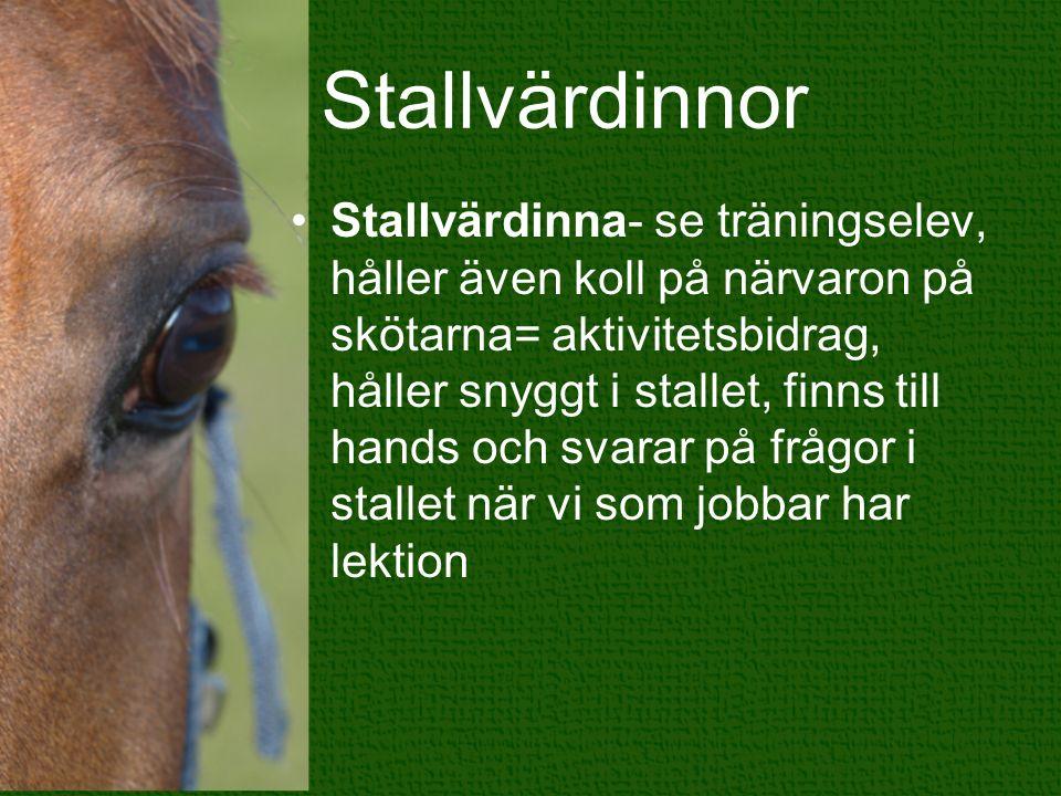 Stallvärdinnor Stallvärdinna- se träningselev, håller även koll på närvaron på skötarna= aktivitetsbidrag, håller snyggt i stallet, finns till hands o