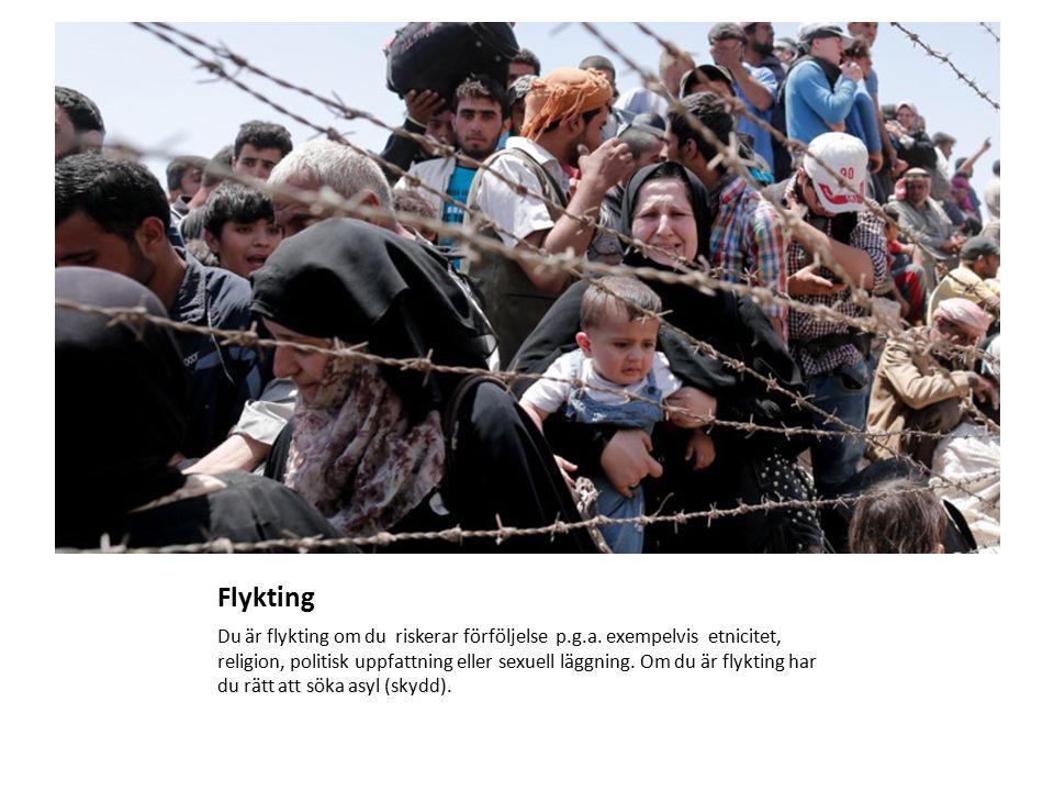 Flykting Du är flykting om du riskerar förföljelse p.g.a.
