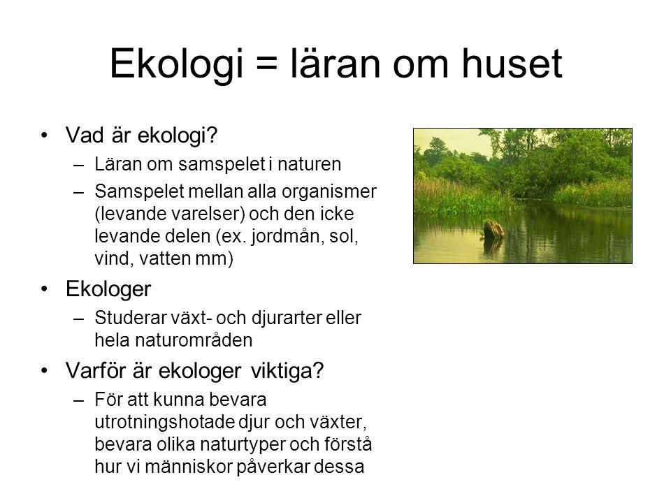 Ekologi = läran om huset Vad är ekologi.