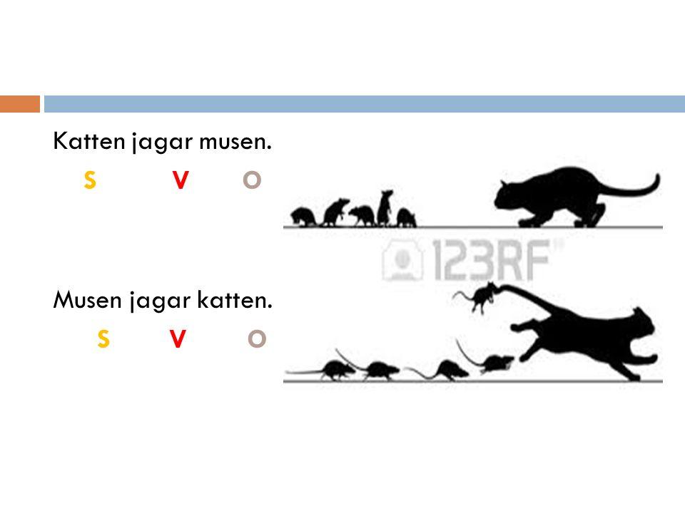 Katten jagar musen. S V O Musen jagar katten. S V O