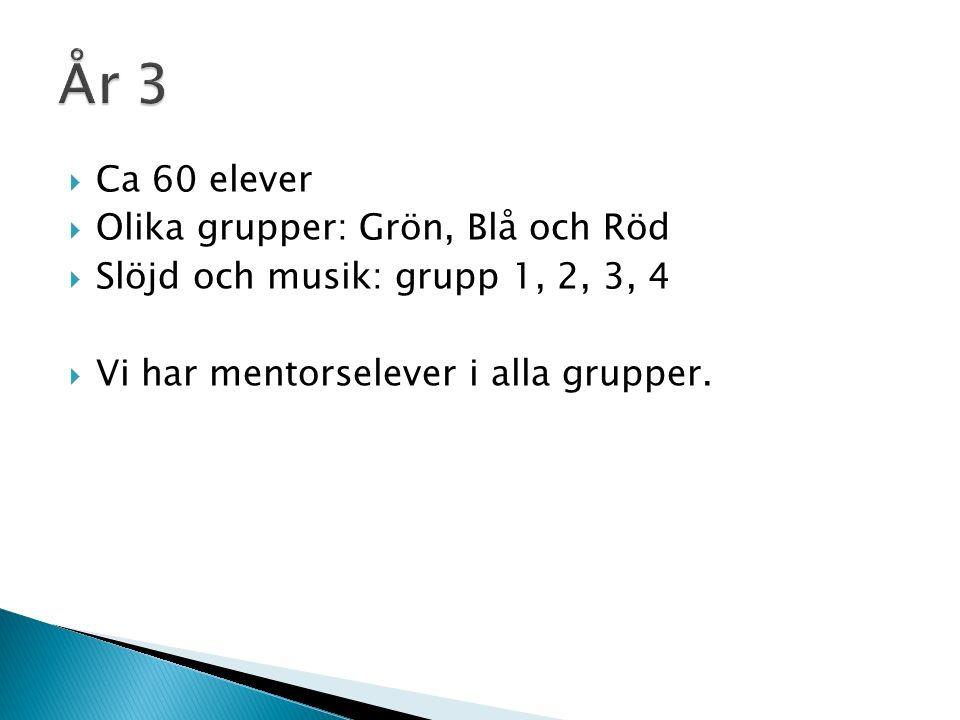  Ca 60 elever  Olika grupper: Grön, Blå och Röd  Slöjd och musik: grupp 1, 2, 3, 4  Vi har mentorselever i alla grupper.