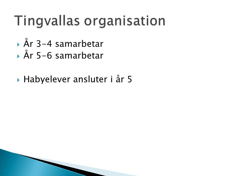  År 3-4 samarbetar  År 5-6 samarbetar  Habyelever ansluter i år 5