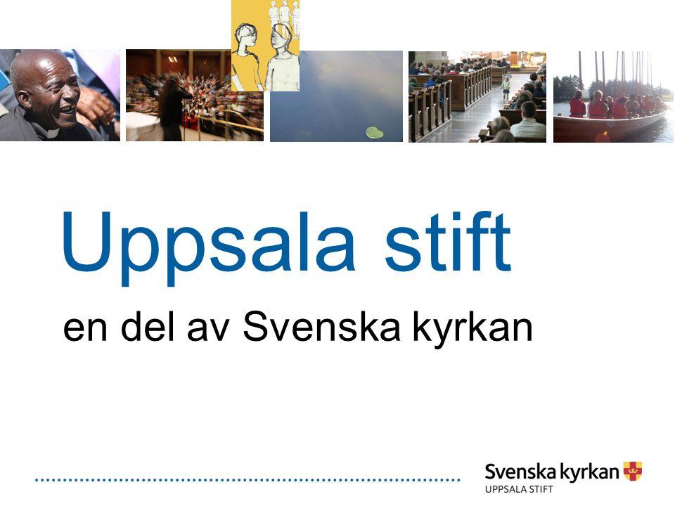 Svenska kyrkan Ett evangelisk-lutherskt trossamfund, framträder som stift och församlingar Nationella organ En öppen folkkyrka med rikstäckande verksamhet