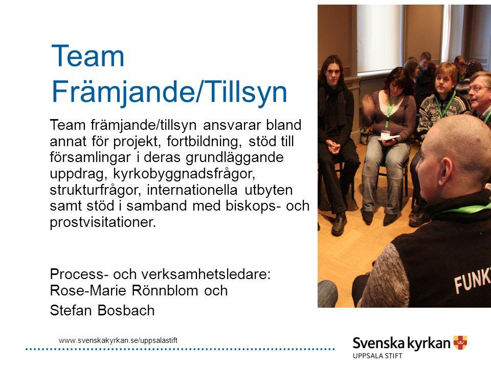 Team Främjande/Tillsyn Team främjande/tillsyn ansvarar bland annat för projekt, fortbildning, stöd till församlingar i deras grundläggande uppdrag, ky