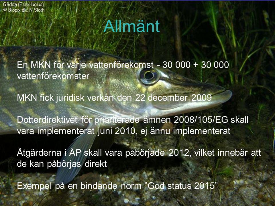 En MKN för varje vattenförekomst - 30 000 + 30 000 vattenförekomster MKN fick juridisk verkan den 22 december 2009 Dotterdirektivet för prioriterade ämnen 2008/105/EG skall vara implementerat juni 2010, ej ännu implementerat Åtgärderna i ÅP skall vara påbörjade 2012, vilket innebär att de kan påbörjas direkt Exempel på en bindande norm God status 2015 Allmänt