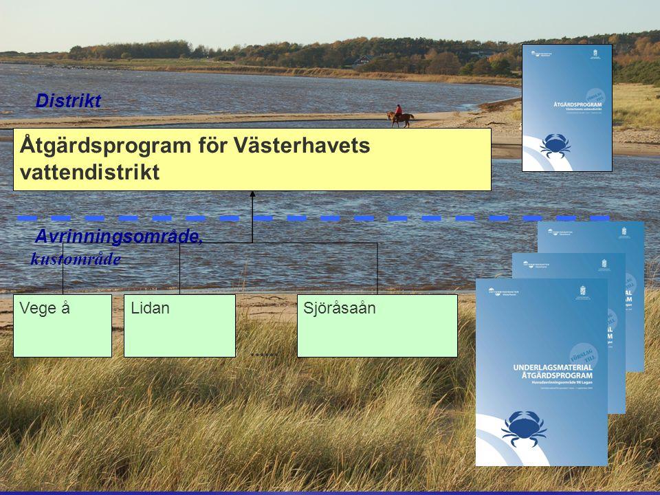 Åtgärdsprogram för Västerhavets vattendistrikt Vege åLidanSjöråsaån......