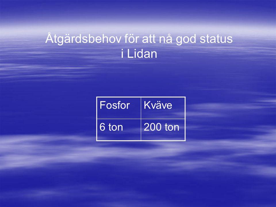 Åtgärdsbehov för att nå god status i Lidan FosforKväve 6 ton200 ton