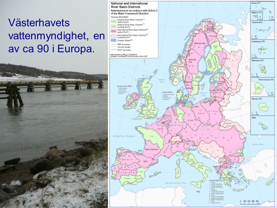 Västerhavets vattenmyndighet, en av ca 90 i Europa.