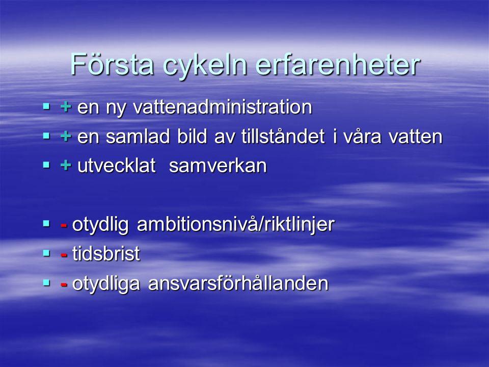  + en ny vattenadministration  + en samlad bild av tillståndet i våra vatten  + utvecklat samverkan  - otydlig ambitionsnivå/riktlinjer  - tidsbrist  - otydliga ansvarsförhållanden Första cykeln erfarenheter