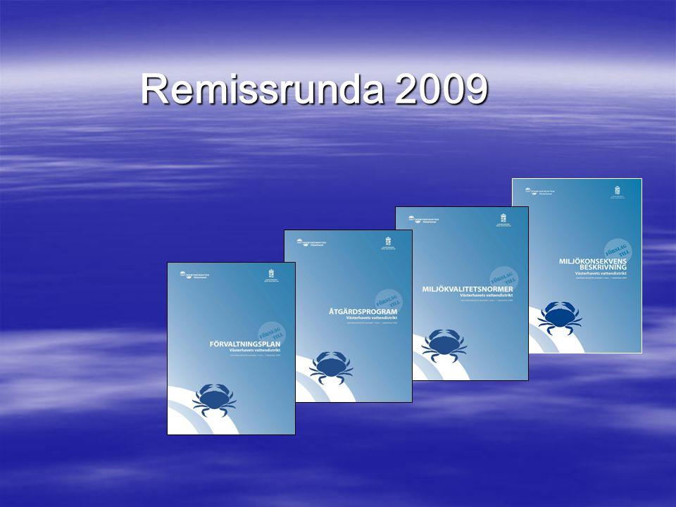 Remissrunda 2009
