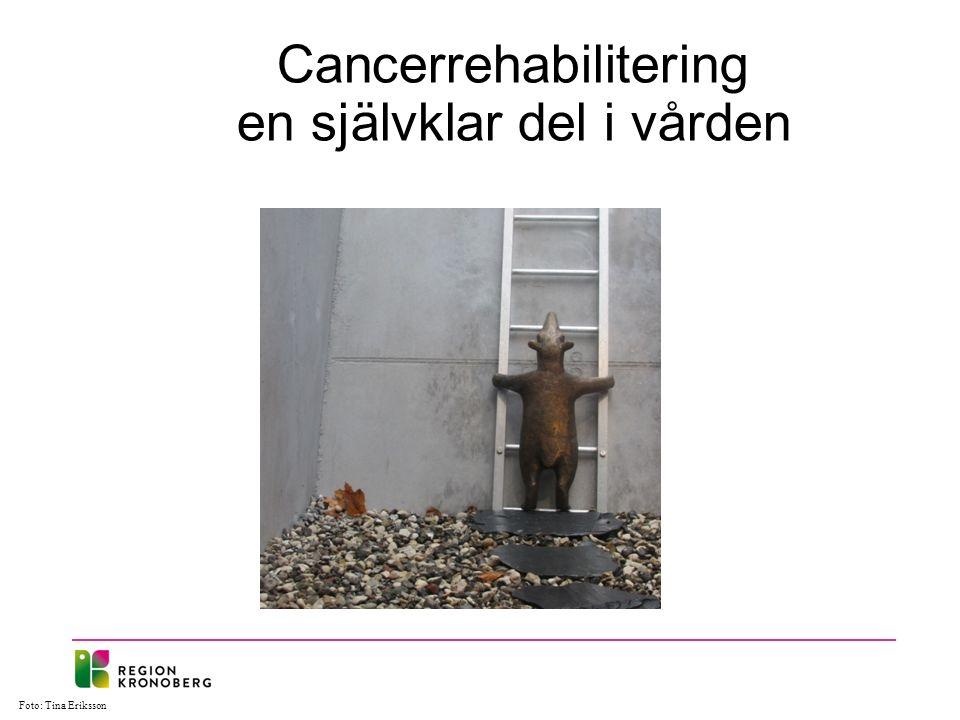 Cancerrehabilitering en självklar del i vården Foto: Tina Eriksson