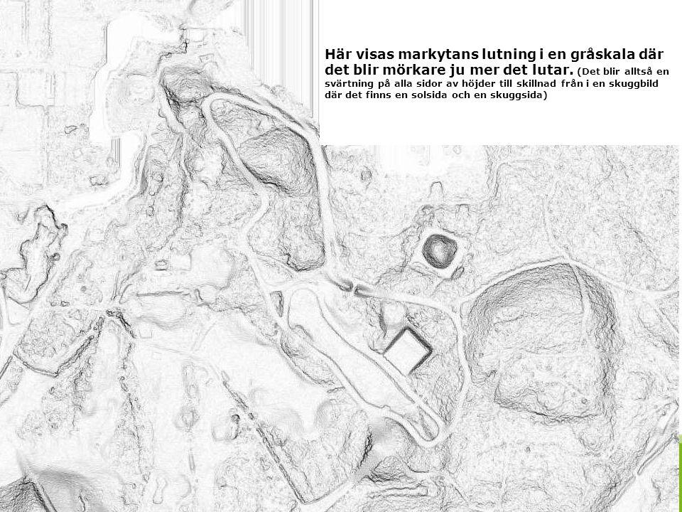 2016-09-24 40 I en lutningsbild baserad på samtliga punkter i molnet så framträder vegetationen och även byggnader.