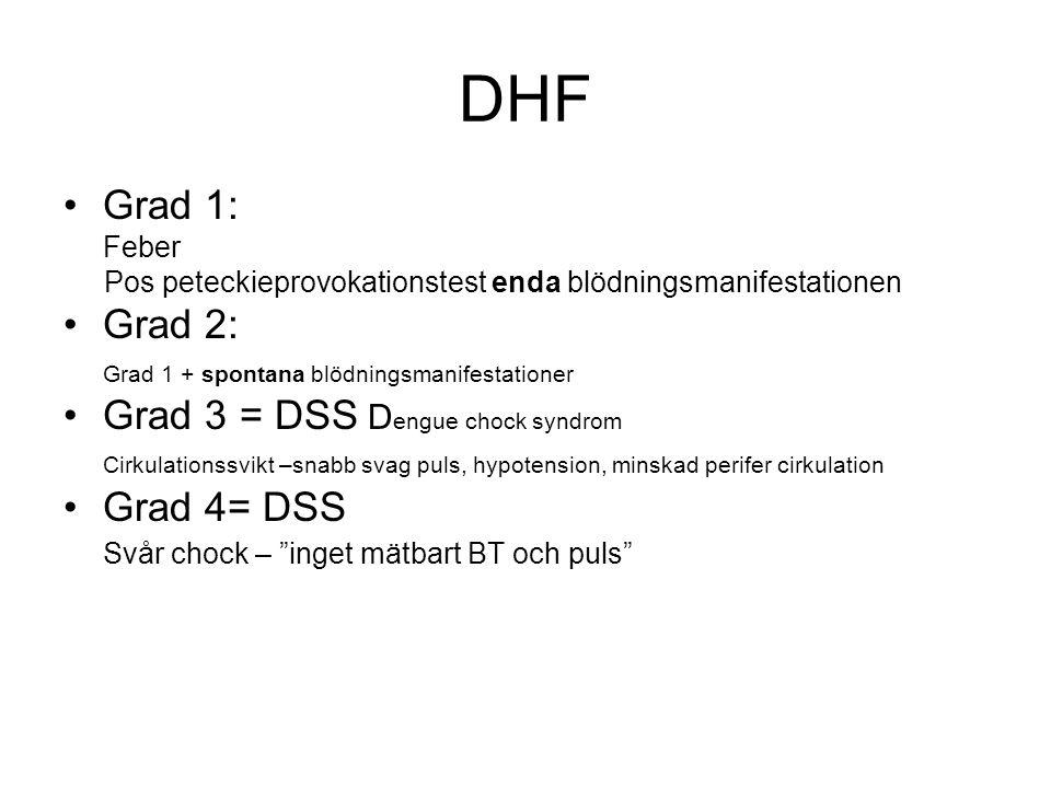 DHF Grad 1: Feber Pos peteckieprovokationstest enda blödningsmanifestationen Grad 2: Grad 1 + spontana blödningsmanifestationer Grad 3 = DSS D engue chock syndrom Cirkulationssvikt –snabb svag puls, hypotension, minskad perifer cirkulation Grad 4= DSS Svår chock – inget mätbart BT och puls