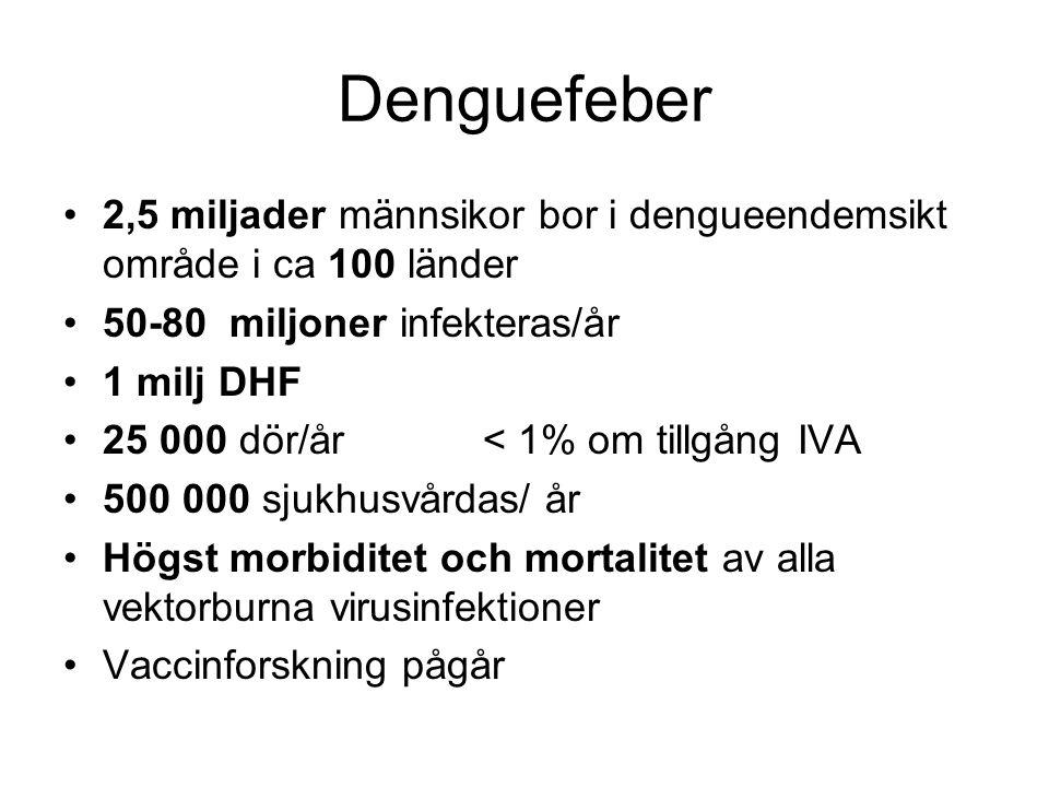 Denguefeber 2,5 miljader männsikor bor i dengueendemsikt område i ca 100 länder 50-80 miljoner infekteras/år 1 milj DHF 25 000 dör/år < 1% om tillgång IVA 500 000 sjukhusvårdas/ år Högst morbiditet och mortalitet av alla vektorburna virusinfektioner Vaccinforskning pågår