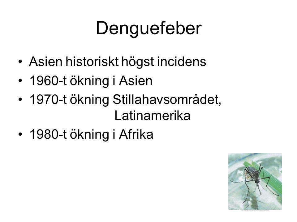 Denguefeber Asien historiskt högst incidens 1960-t ökning i Asien 1970-t ökning Stillahavsområdet, Latinamerika 1980-t ökning i Afrika