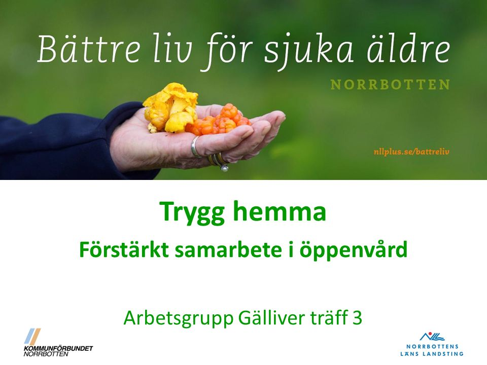 Trygg hemma Förstärkt samarbete i öppenvård Arbetsgrupp Gälliver träff 3