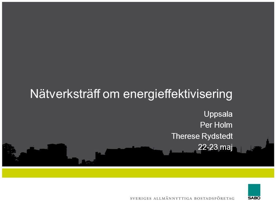 Nätverksträff om energieffektivisering Uppsala Per Holm Therese Rydstedt 22-23 maj