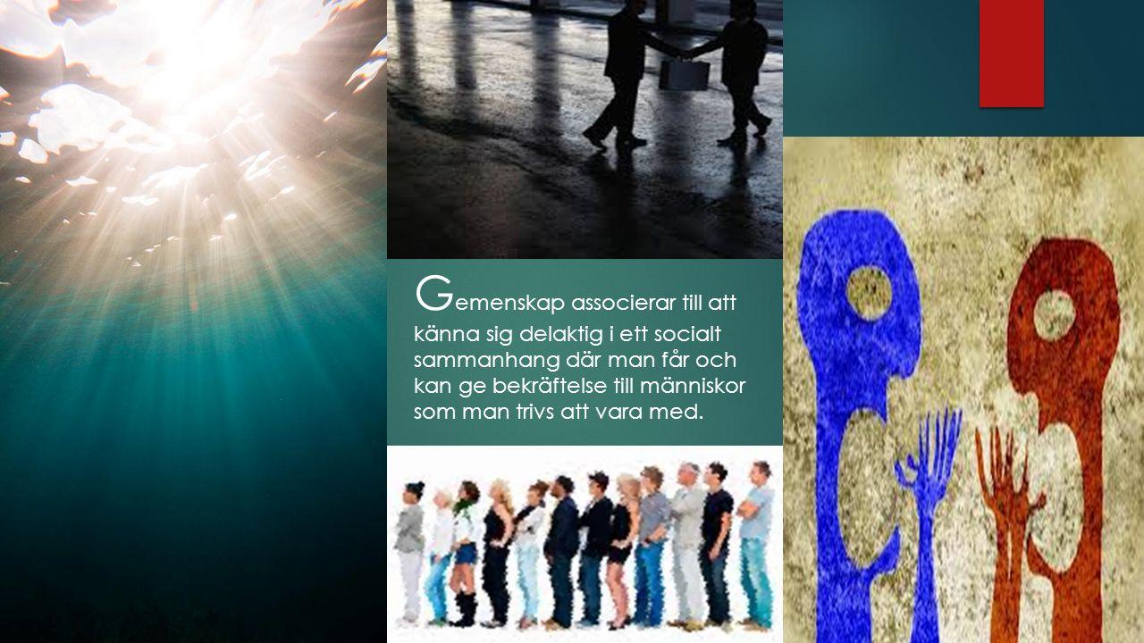 G emenskap associerar till att känna sig delaktig i ett socialt sammanhang där man får och kan ge bekräftelse till människor som man trivs att vara med.