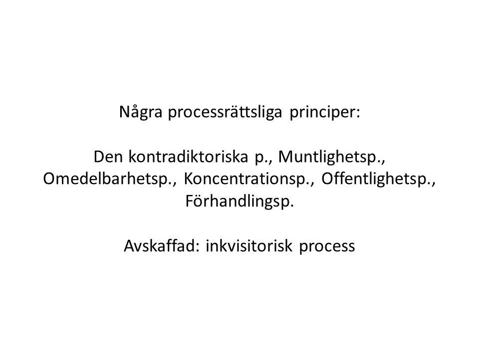Några processrättsliga principer: Den kontradiktoriska p., Muntlighetsp., Omedelbarhetsp., Koncentrationsp., Offentlighetsp., Förhandlingsp.