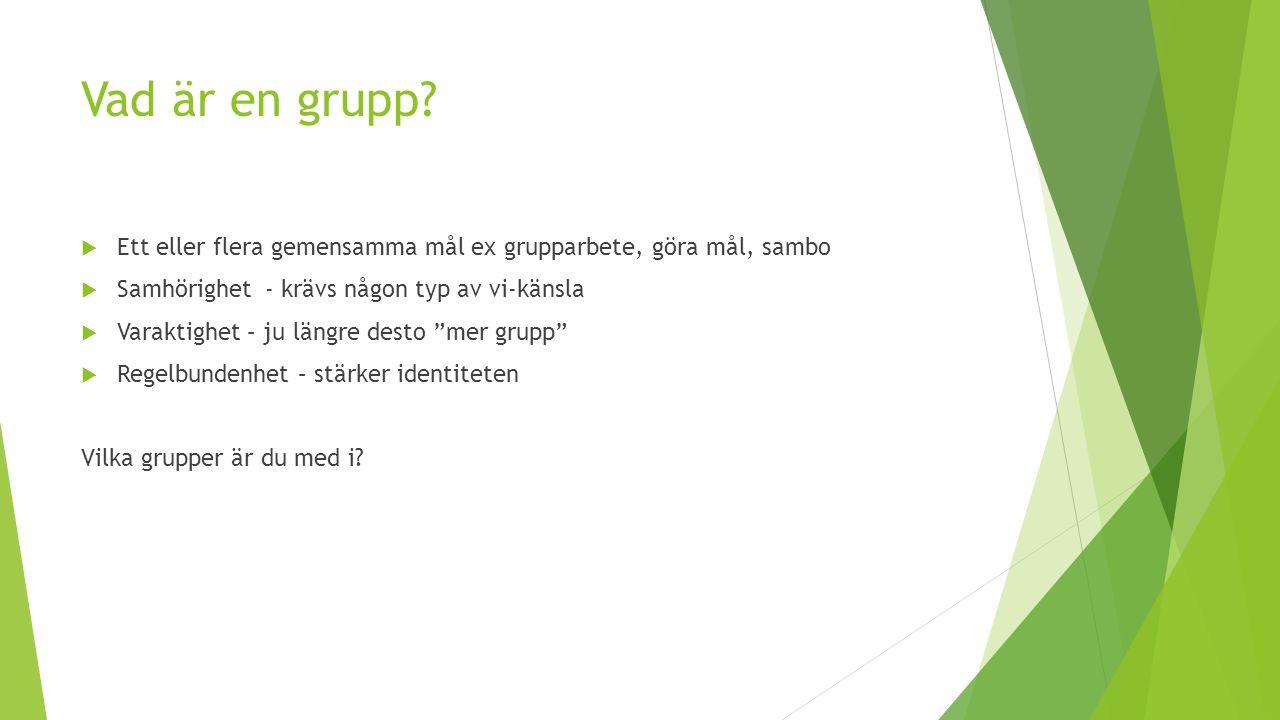 Vad är en grupp?  Ett eller flera gemensamma mål ex grupparbete, göra mål, sambo  Samhörighet - krävs någon typ av vi-känsla  Varaktighet – ju läng