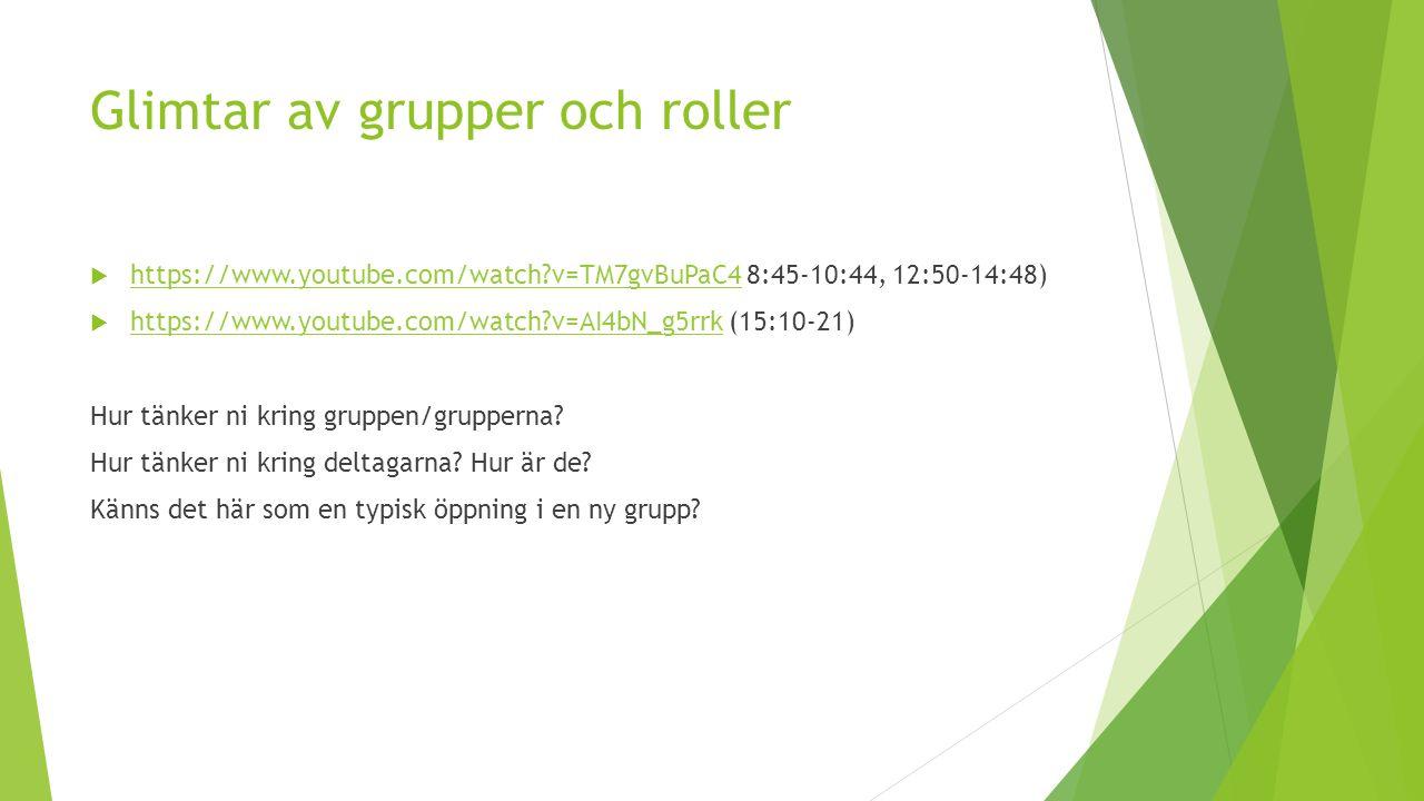 Glimtar av grupper och roller  https://www.youtube.com/watch?v=TM7gvBuPaC4 8:45-10:44, 12:50-14:48) https://www.youtube.com/watch?v=TM7gvBuPaC4  https://www.youtube.com/watch?v=AI4bN_g5rrk (15:10-21) https://www.youtube.com/watch?v=AI4bN_g5rrk Hur tänker ni kring gruppen/grupperna.