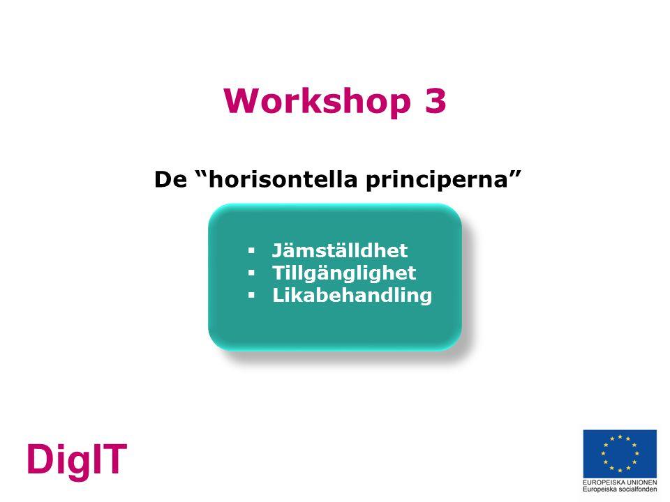 DigIT Workshop 3 De horisontella principerna  Jämställdhet  Tillgänglighet  Likabehandling