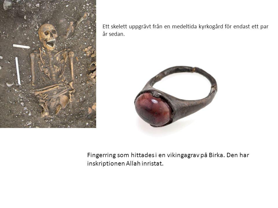 Ett skelett uppgrävt från en medeltida kyrkogård för endast ett par år sedan.