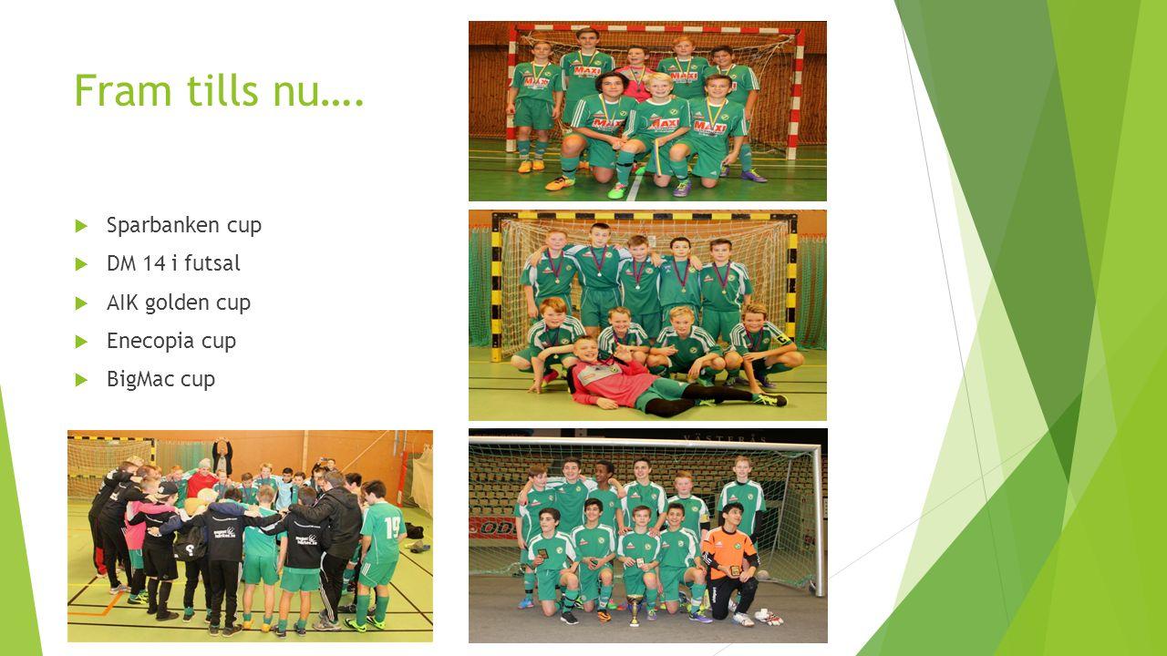 Fram tills nu….  Sparbanken cup  DM 14 i futsal  AIK golden cup  Enecopia cup  BigMac cup