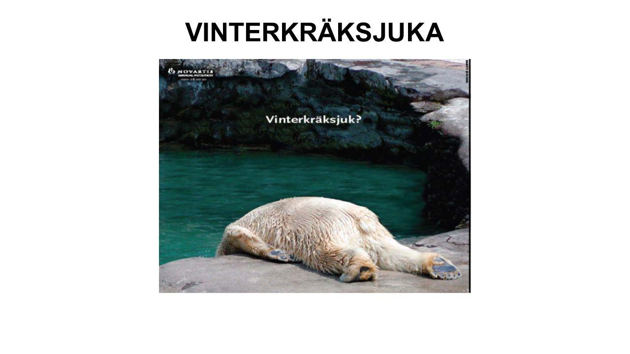VINTERKRÄKSJUKA