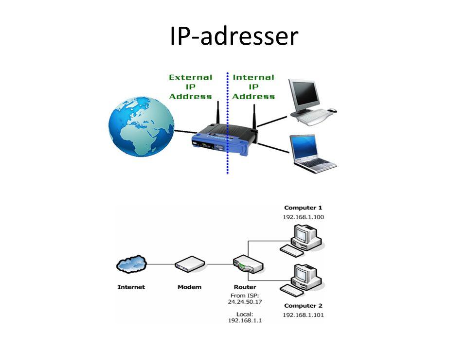 IP-adresser