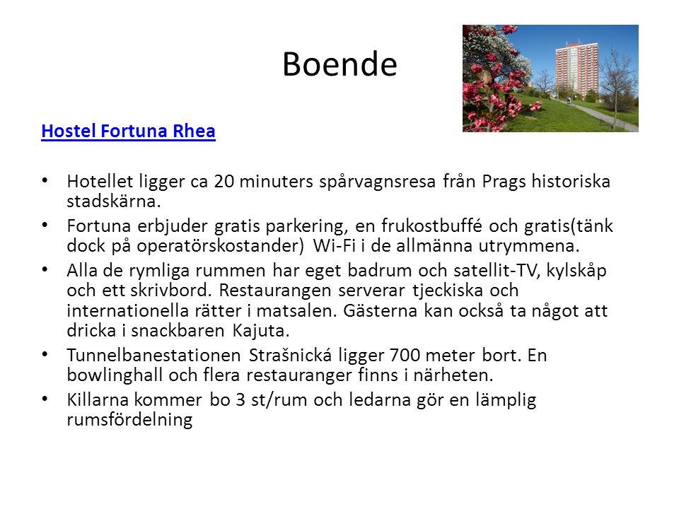 Boende Hostel Fortuna Rhea Hotellet ligger ca 20 minuters spårvagnsresa från Prags historiska stadskärna.