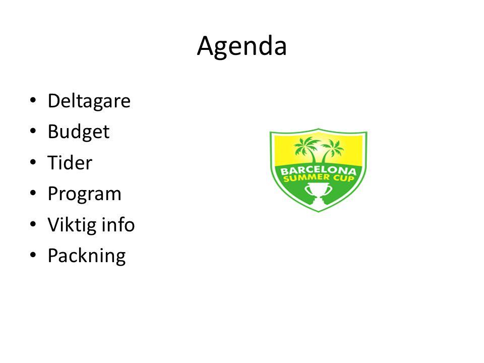 Agenda Deltagare Budget Tider Program Viktig info Packning