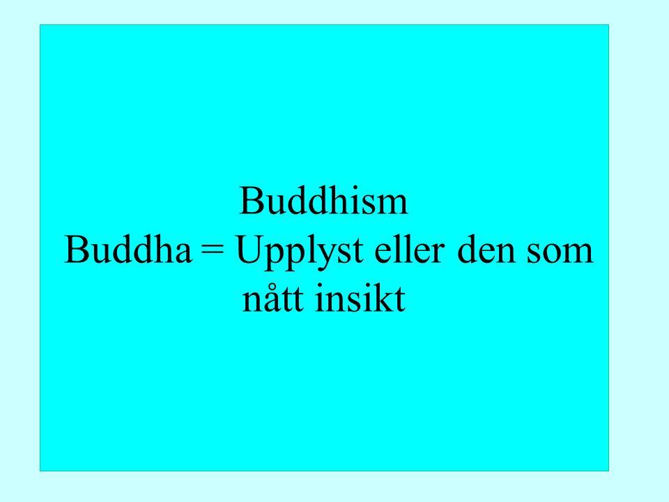 Buddhism Buddha = Upplyst eller den som nått insikt