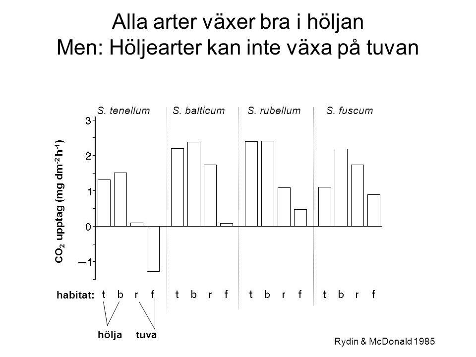 S. tenellumS. balticumS. rubellumS. fuscum habitat: CO 2 upptag (mg dm -2 h -1 ) höljatuva Alla arter växer bra i höljan Men: Höljearter kan inte växa
