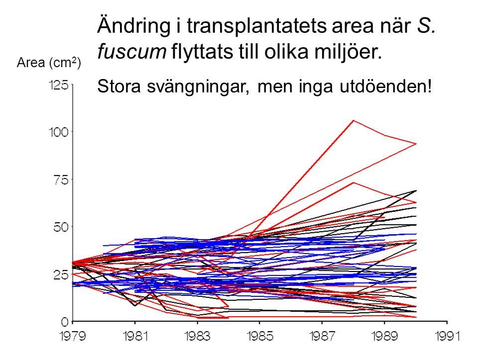 Ändring i transplantatets area när S. fuscum flyttats till olika miljöer.
