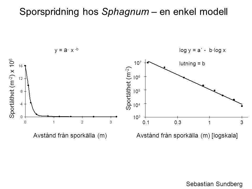 Sporspridning hos Sphagnum – en enkel modell y = a· x -b log y = a´ - b·log x lutning = b 10 3 10 4 10 5 10 6 10 7 Sebastian Sundberg 0.1 0.3 1 3 Avstånd från sporkälla (m)Avstånd från sporkälla (m) [logskala] Sportäthet (m -2 ) x 10 6 Sportäthet (m -2 )
