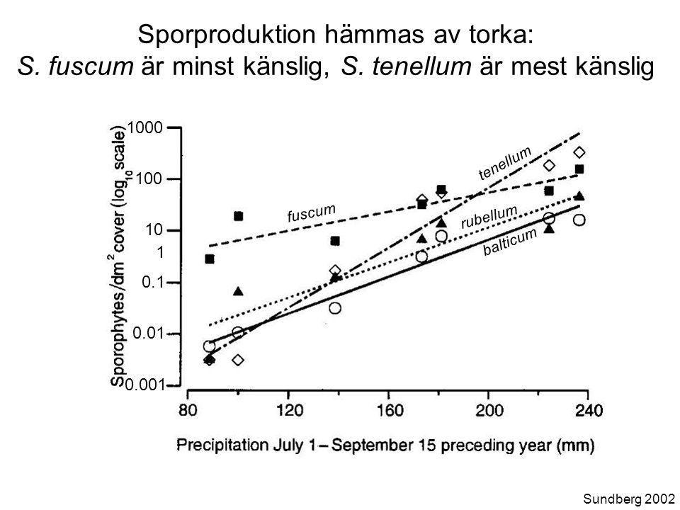 0.001 0.1 1 10 0.01 100 1000 fuscum balticum rubellum tenellum Sporproduktion hämmas av torka: S.