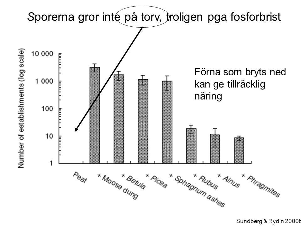 Sundberg & Rydin 2000b Sporerna gror inte på torv, troligen pga fosforbrist Förna som bryts ned kan ge tillräcklig näring