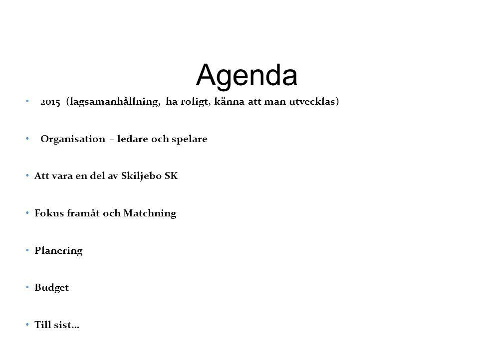 Agenda 2015 (lagsamanhållning, ha roligt, känna att man utvecklas) Organisation – ledare och spelare Att vara en del av Skiljebo SK Fokus framåt och Matchning Planering Budget Till sist…