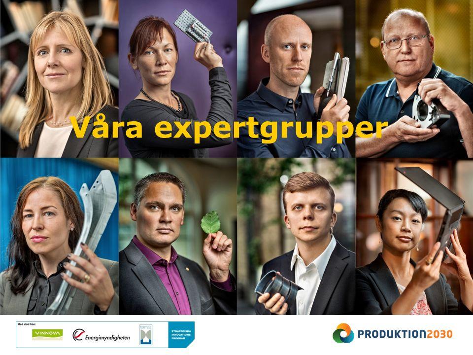 Våra expertgrupper