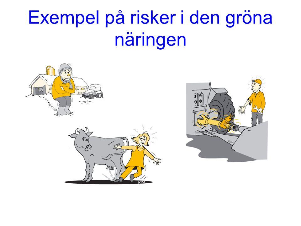 Exempel på risker i den gröna näringen
