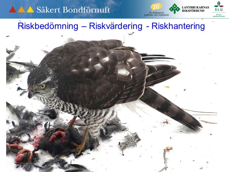 Riskbedömning – Riskvärdering - Riskhantering