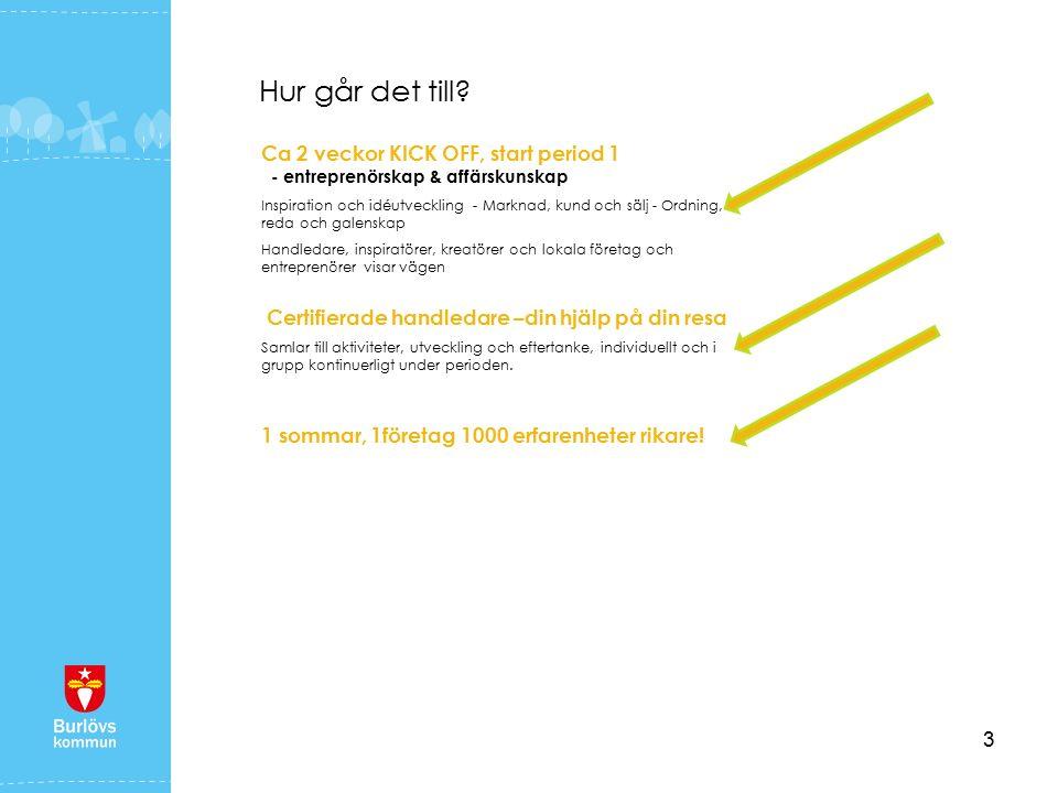4 Sommarlovsentreprenör i Burlöv erbjuder ett program som ska ge kunskap på kort och lång sikt.
