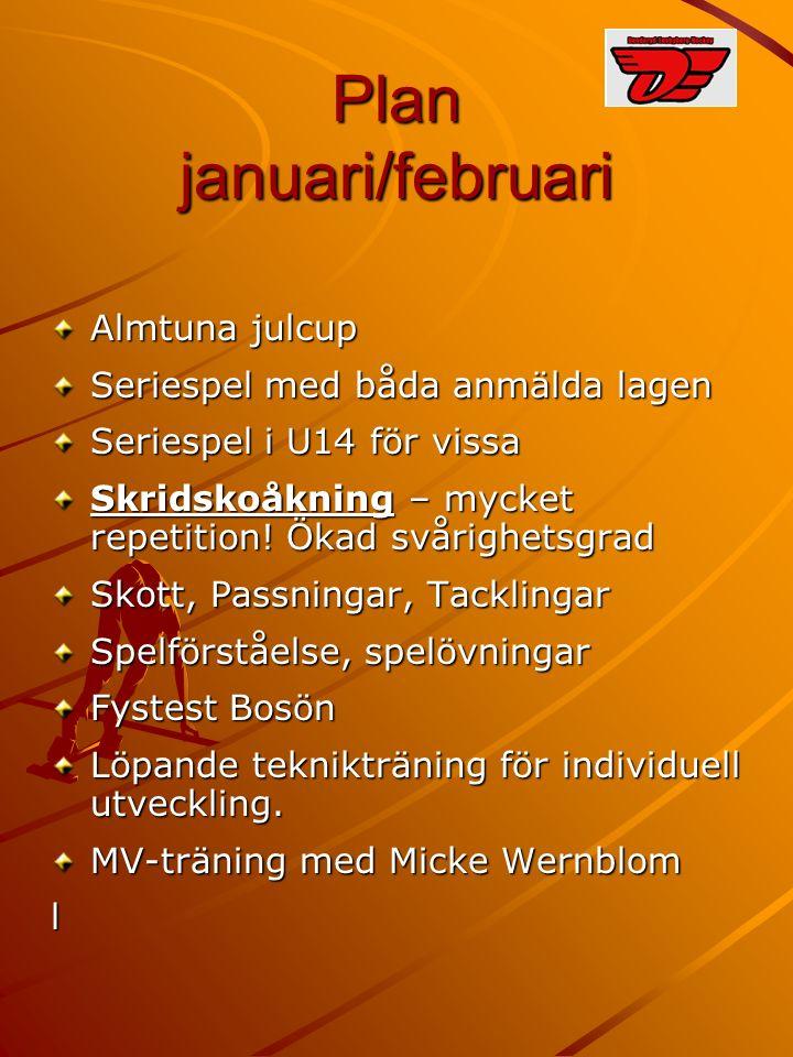 Plan januari/februari Almtuna julcup Seriespel med båda anmälda lagen Seriespel i U14 för vissa Skridskoåkning – mycket repetition.