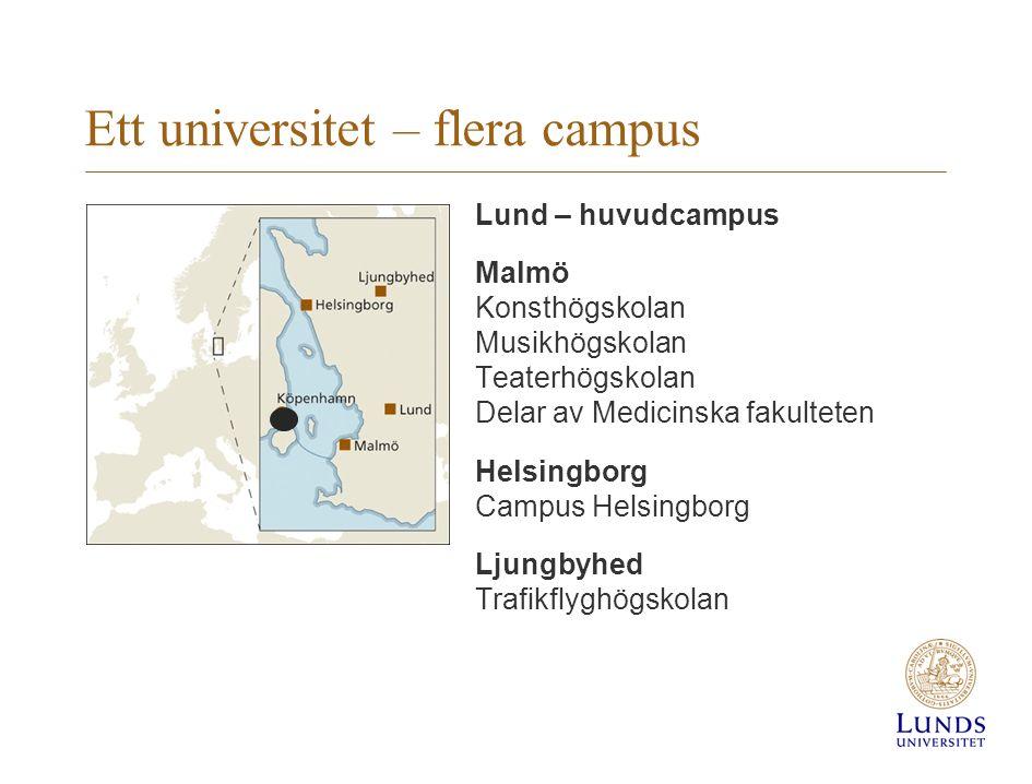 Ett universitet – flera campus Lund – huvudcampus Malmö Konsthögskolan Musikhögskolan Teaterhögskolan Delar av Medicinska fakulteten Helsingborg Campus Helsingborg Ljungbyhed Trafikflyghögskolan